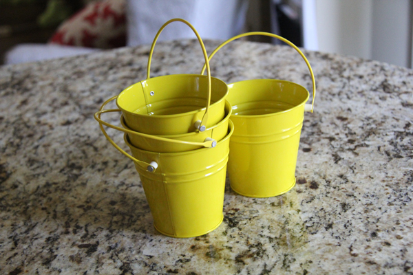 cheap small buckets