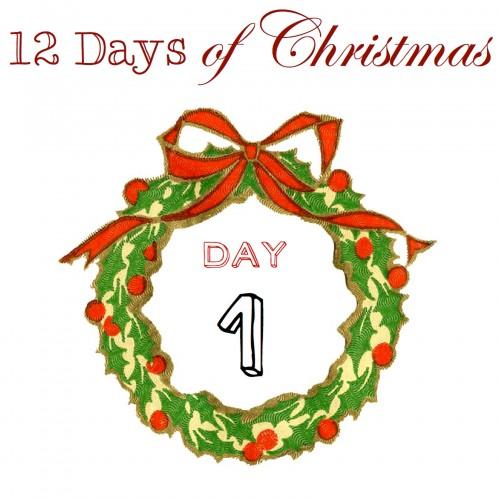 12DaysCOUNTER1