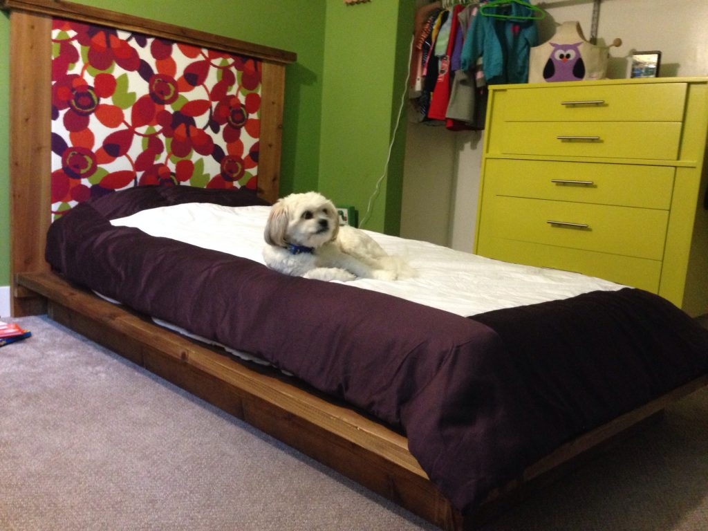 Twin platform bed with upholstered headboard - Shanty 2 Chic