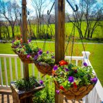 Hanging Basket Column