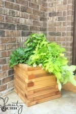 DIY $25 Cedar Planter and How-to Video