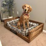 DIY $12 Pet Bed!!