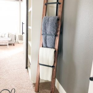 Blanket-Ladder-with-barn-door-pulls